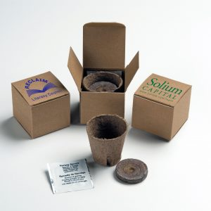 Tree In A Recycled Box Kit SP-TREE-RCBOX Seeded Products Tree Kits